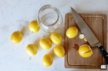 Meyer Lemon 11-30-2015 (2 of 2)