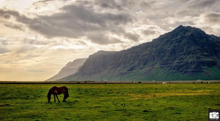 Iceland 2016 CwA (8 of 80)