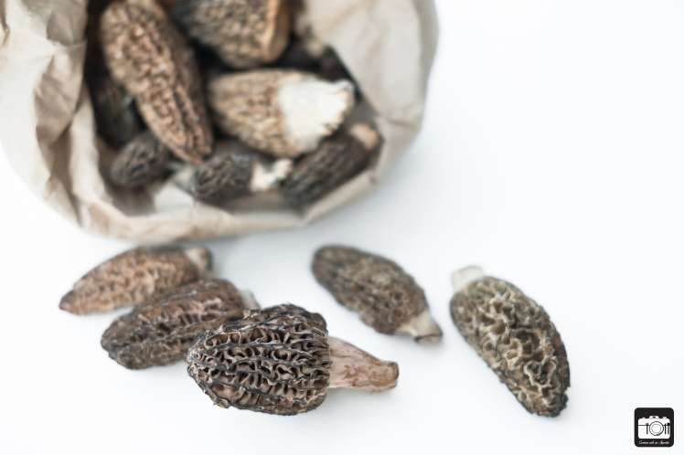 Morel Mushroom and Halibut 06-05-2017 (LQ) (01 of 06)